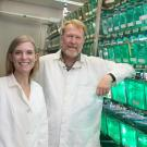 Dena Leerberg and Associate Professor Bruce Draper, Department of Molecular and Cellular Biology